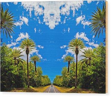 The Sky Has Eyes Wood Print by Scott Harms