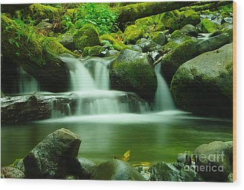The Small Water Wood Print by Jeff Swan