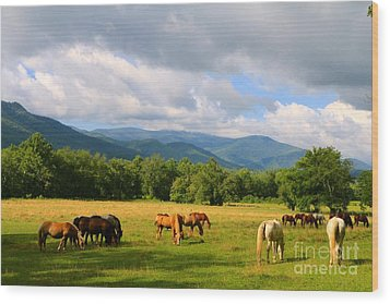 The Smokies Wood Print by Jay Nodianos