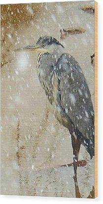 The Snow Bird Wood Print