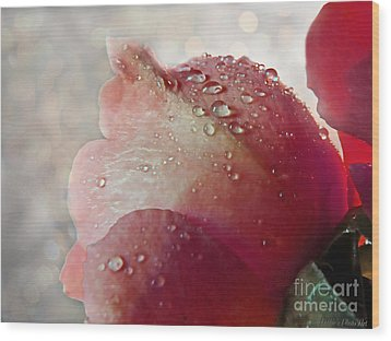 Wood Print featuring the photograph The Soft Kiss Of Dew II by Debbie Portwood