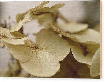 The Soft Whisper Of Petals Wood Print
