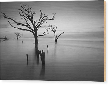 The Sound Of Silence Wood Print by Bernard Chen