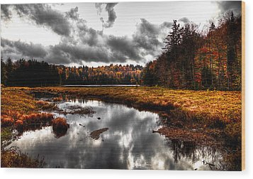 The South End Of Cary Lake Wood Print by David Patterson