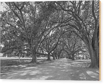 The Southern Way Bw Wood Print by Steve Harrington
