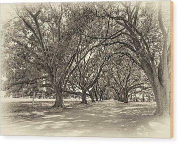 The Southern Way Sepia Wood Print by Steve Harrington