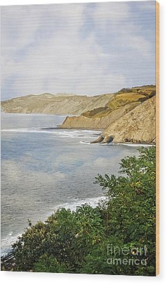 The Spanish North Coast Wood Print by Mary Machare