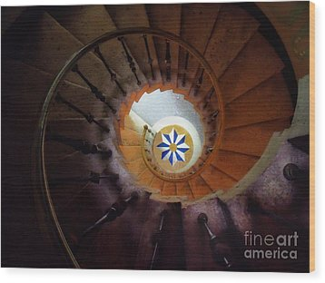 The Spiral Staircase Of Villa Vizcaya Wood Print by Mike Nellums