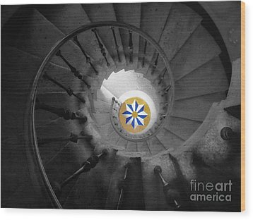 The Spiral Staircase Of Villa Vizcaya Bwcolor Wood Print by Mike Nellums