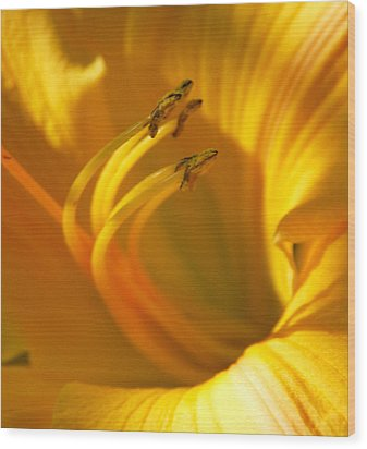Wood Print featuring the digital art The Stamen by Linda Segerson