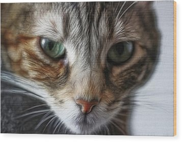 00002 The Stare Wood Print by Photographic Art by Russel Ray Photos