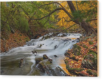 The Still River Wood Print by Bill Wakeley