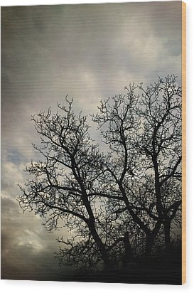 The Storm Wood Print by Lucy D