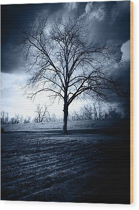 The Storm Wood Print by Susan Bordelon
