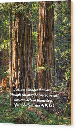 The Strength Of Two - From Ecclesiastes 4.9 And 4.12 - Muir Woods National Monument Wood Print by Michael Mazaika