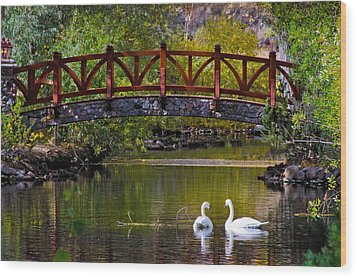 Wood Print featuring the photograph The Swans At Caughlin Ranch by Janis Knight