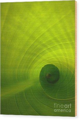 The Swirl Wood Print