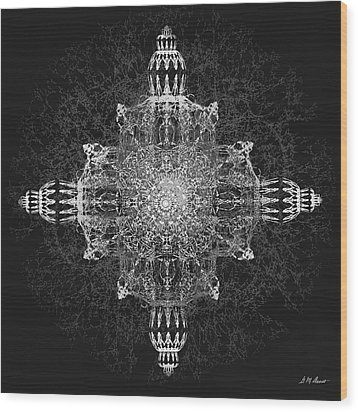 The Tabernacle In Black And White Wood Print by Michael Durst
