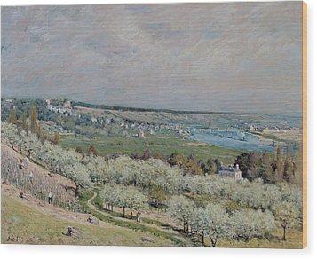 The Terrace At Saint Germain Wood Print by Alfred Sisley