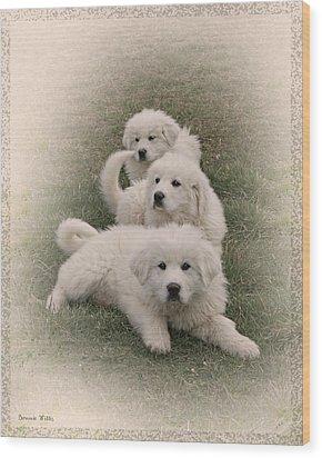 The Three Wood Print by Bonnie Willis