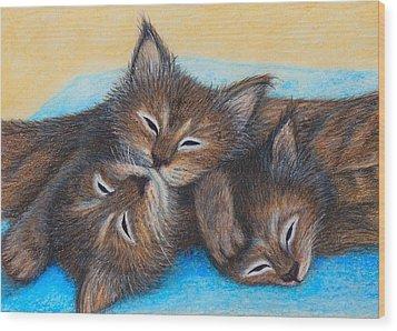 The Three Zzz Wood Print