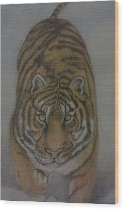 The Tiger Wood Print by Christy Saunders Church