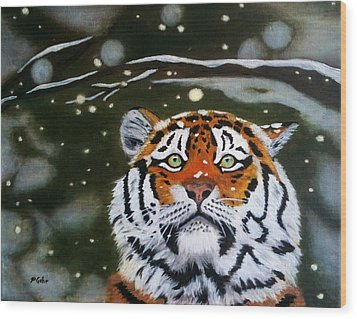 The Tiger In Winter Wood Print