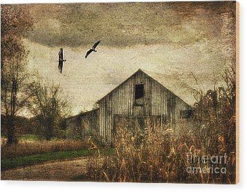 The Times They Are A Changing Wood Print by Lois Bryan