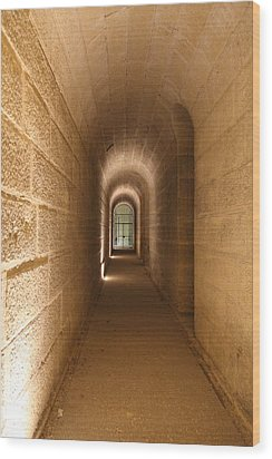The Tombs At Les Invalides - Paris France - 011336 Wood Print by DC Photographer