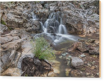 The Top Of Carr Canyon Falls Wood Print