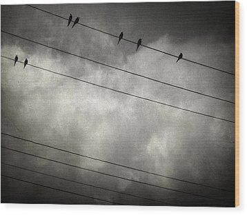The Trace 11.24 Wood Print by Taylan Apukovska