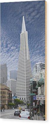 The Transamerica Pyramid - San Francisco Wood Print by Mike McGlothlen
