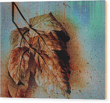 The Transience Of All Things Wood Print by Martina  Rathgens