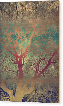 The Tree Called Beautiful Wood Print by Gray  Artus