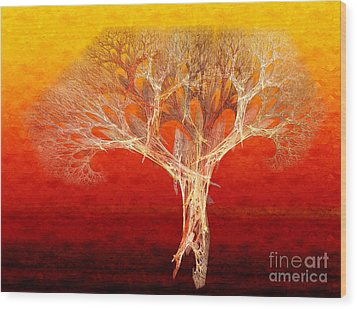 The Tree In Fall At Sunset - Painterly - Abstract - Fractal Art Wood Print by Andee Design