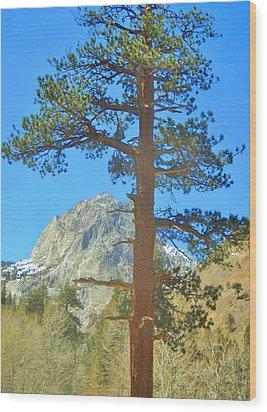 The Tree Wood Print by Marilyn Diaz