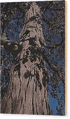 Wood Print featuring the photograph The Tree Of Life by Deborah Klubertanz