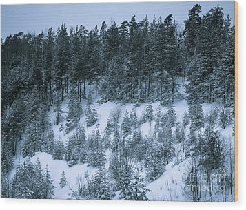The Trees Of The Snowy Hill Wood Print
