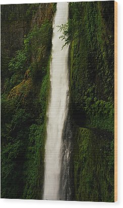 The Tunnel Behind Tunnels Falls Wood Print by Jeff Swan
