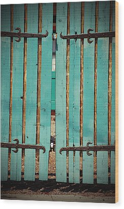 The Turquoise Gate Wood Print by Holly Blunkall