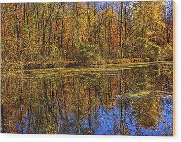 The Vibrancy Of Leaves Wood Print