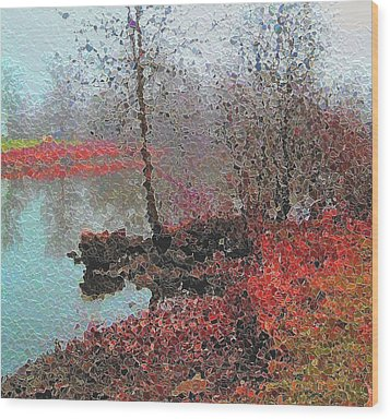 The View Across The Rideau On A Foggy Morning Wood Print by Mario Carini