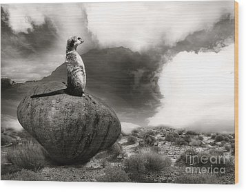 Wood Print featuring the photograph The View by Christine Sponchia