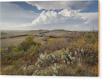 The View From Coronado Heights Wood Print