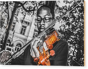 The Violinist  Wood Print by Steven  Taylor