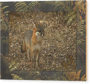 The Visitor Wood Print by TnBackroadsPhotos