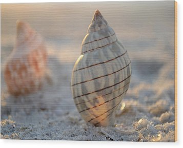 The Voice Of The Sea Wood Print by Melanie Moraga