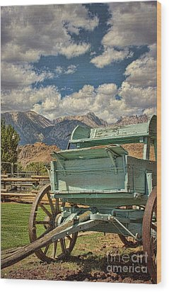Wood Print featuring the photograph The Wagon by Peggy Hughes