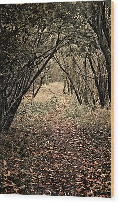 The Walk Wood Print by Meirion Matthias