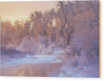 The Warmth Of Winter Wood Print by Darren  White